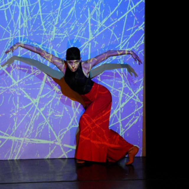Gefühle im Bild – Ballett Fotos von Heidi Innmann im Theater Hof.