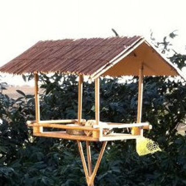 Mehr als Deko im Garten - das selber gebaute Vogelhaus