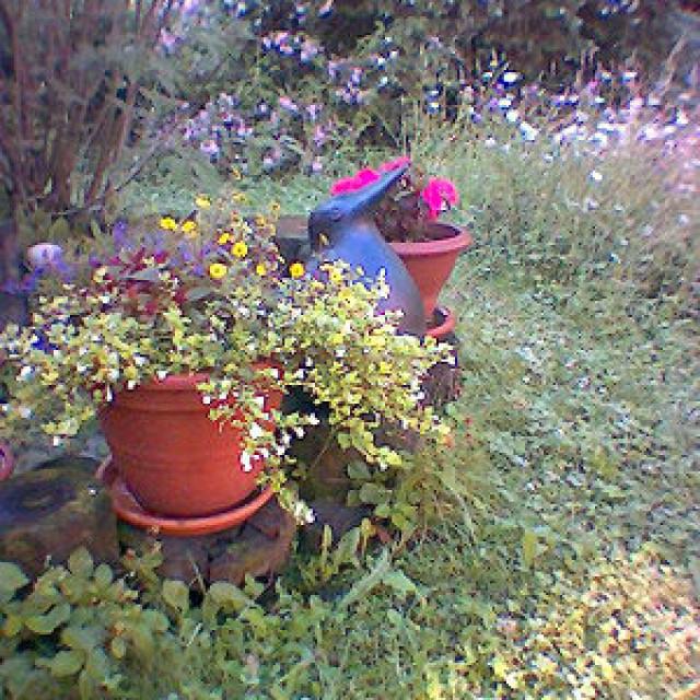 Keramik Vogel - Garten gestalten!