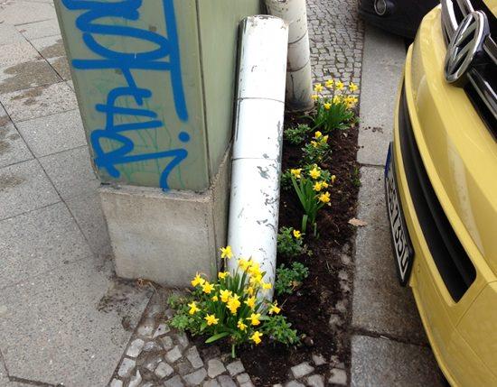 Guerlilla Gardening in Berlin 2013