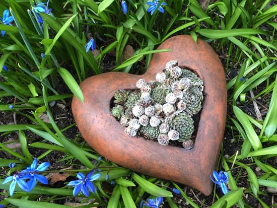 Herz aus Ton - Pflanzgefäß