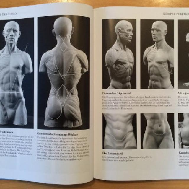 Körper perfekt modellieren – Band 1
